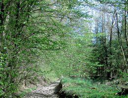 Estudio de vulnerabilidad en áreas protegidas
